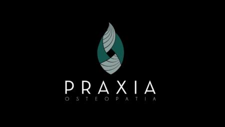 Tutustu Praxiaan!